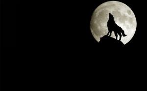 """""""full moon in taurus"""""""