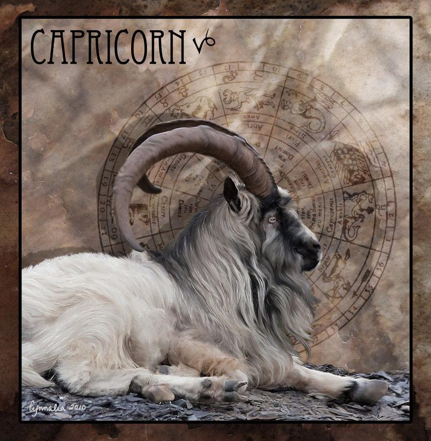 """saturn in capricorn"""